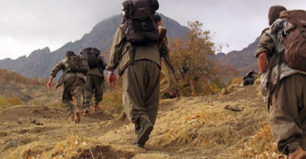 """İçişleri Bakanlığı, """"PKK'nın 5 üst düzey yöneticisi yakalandı"""""""