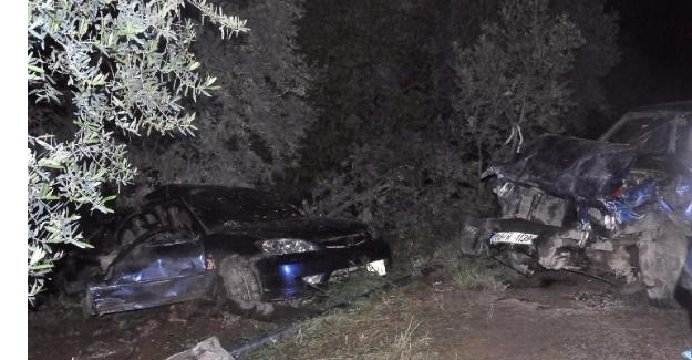 İznik'te Korkunç Kaza : 3 ölü, 2 Yaralı