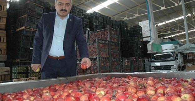 Karaman'da 50 bin ton elma depoda kaldı