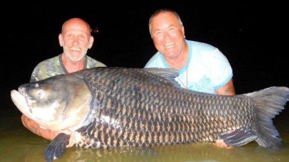 Ölen arkadaşlarını kullanarak balık avladılar