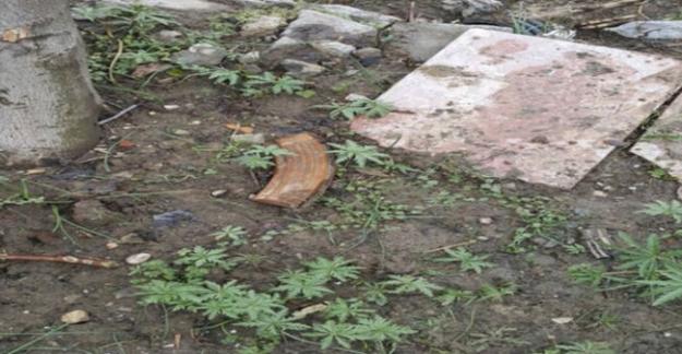 PKK'nın kullandığı evin bahçesinden bakın ne çıktı!