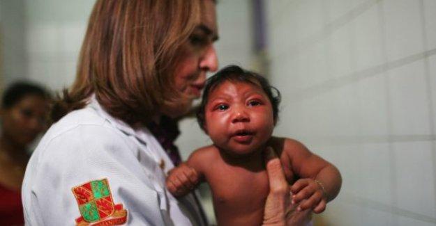 Zika virüsü nedir? Hamile kadınlar nasıl korunabilir?