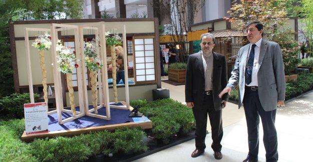 D-8 Genel Sekreterinden EXPO 2016'ya Ziyaret