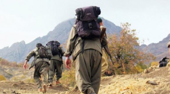 Erzurum'da PKK'ya operasyon, 15 gözaltı