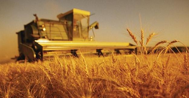 Genç Çiftçinin Desteklenmesi Programına büyük ilgi, 378 bin başvuru yapıldı