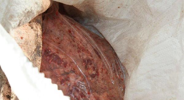 Keşan'da 875 kilo kaçak et ele geçirildi