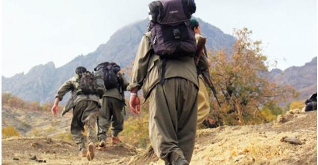 PKK'lı terörist'ten olay açıklama: Korktum, kaçmak istedim