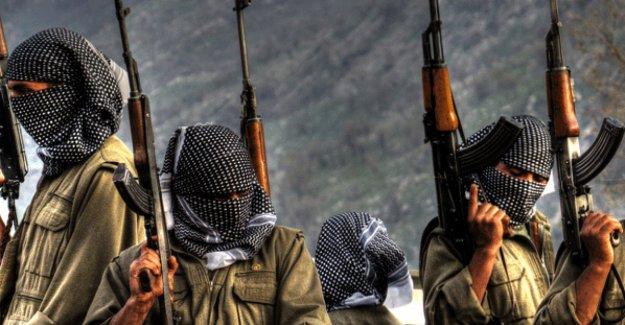 PKK Diyarbakır'da terör estirdi