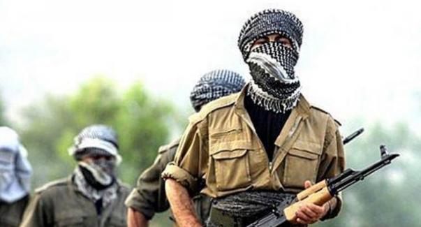 """Mardin'de """"Baz"""" kodlu üst düzey PKK'lı yakalandı"""