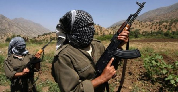 """PKK'nın """"sözde İdil sorumlusu"""" Nurhak öldürüldü"""