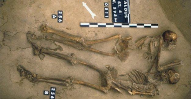Polonya'da vampir mezarı keşfedildi