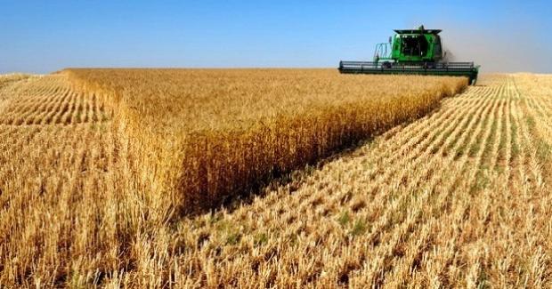 Çiftçilere 600 milyon liralık destek