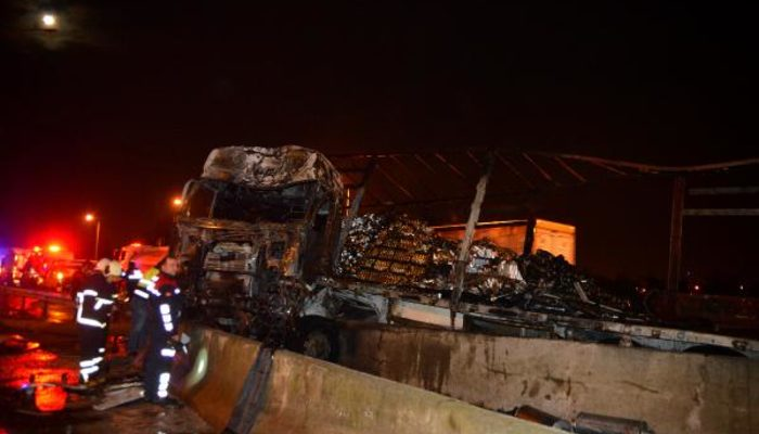 Adana'da feci kaza! TIR sürücüsü yanarak hayatını kaybetti