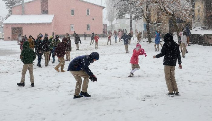 Bitlis, Van ve Hakkari'de kar yağışı nedeniyle okullar tatil edildi