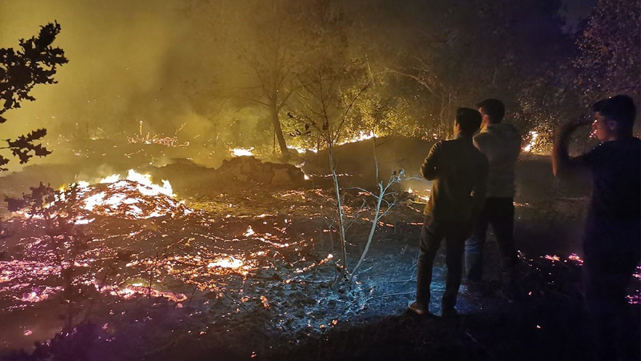 Bodrum'da akşam saatlerinde korkutan yangın!