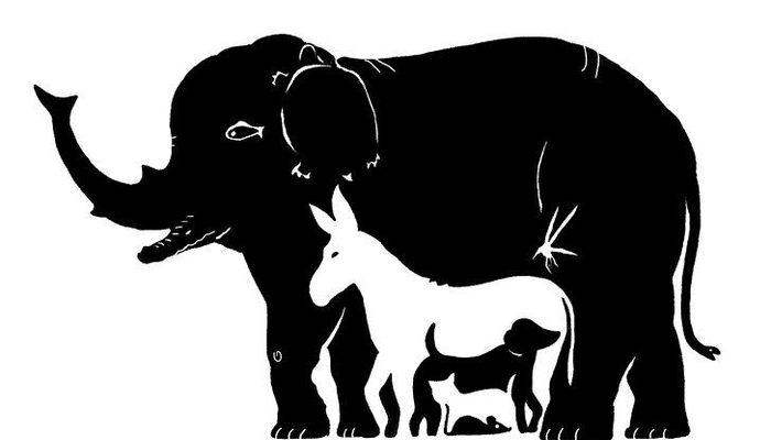 Bu resimde kaç tane hayvan var?