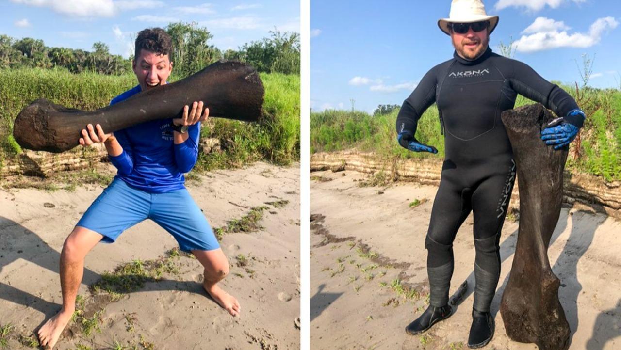 Buz Devri keşfi: Dev mamut kemiği bulundu Florida'da iki arkadaş bir nehrin dibinden mamut fosili çıkardı. Kolomb mamutu olarak bilinen örneğin...