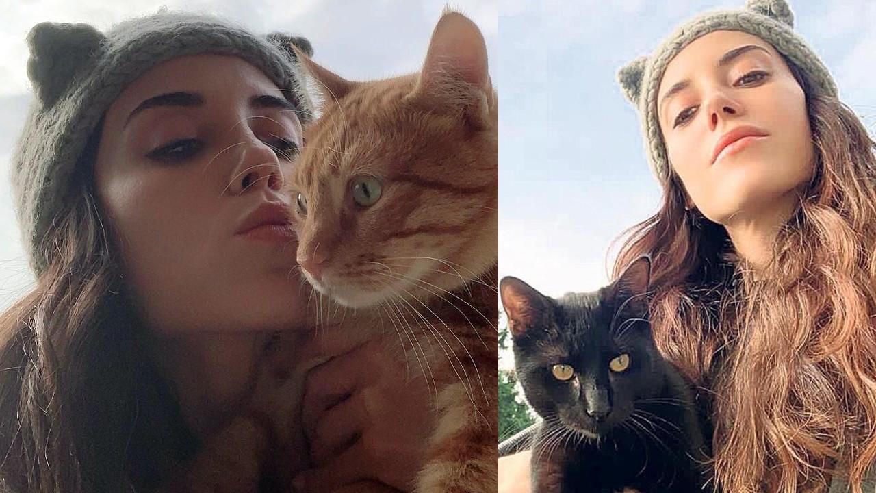 Cansu Dere'den kedi severlere önemli çağrı