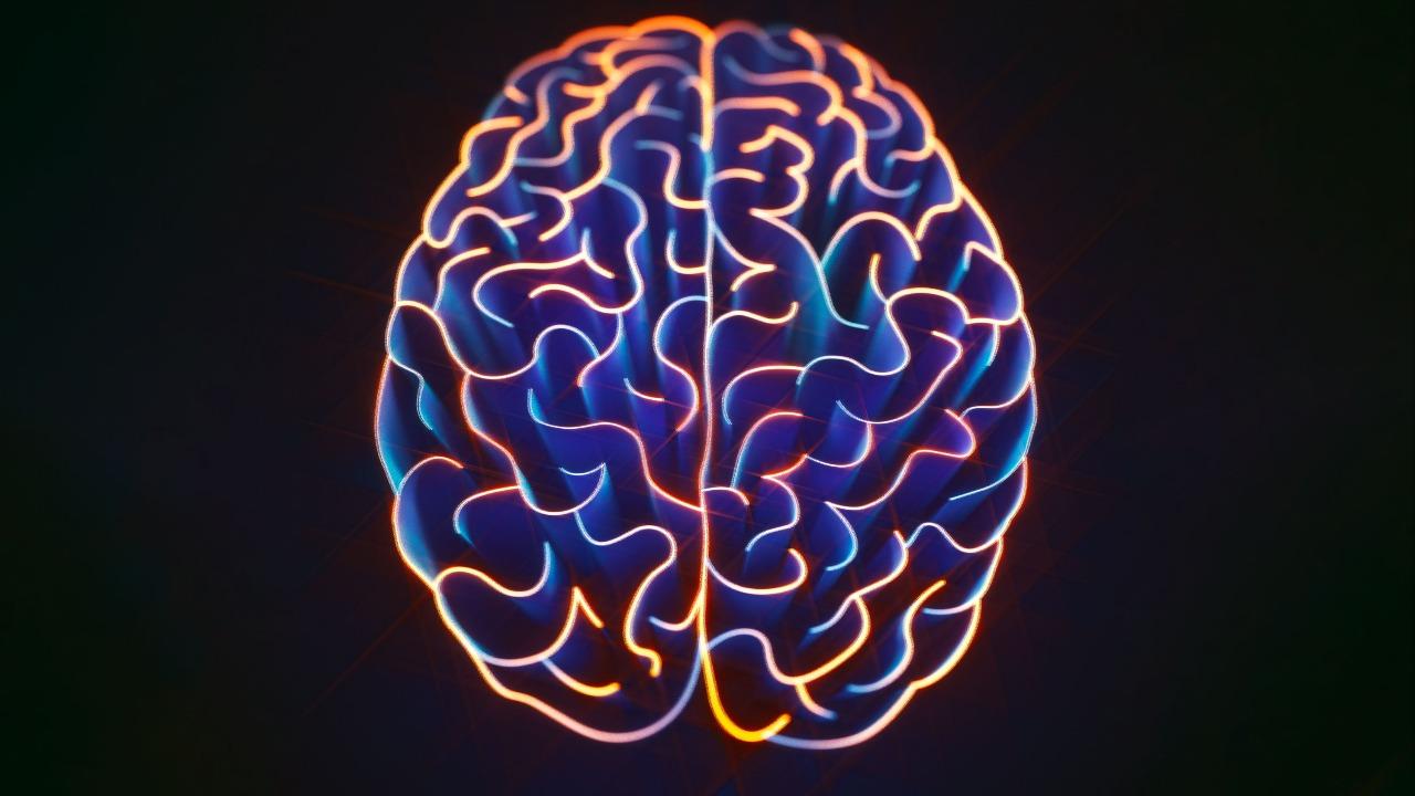 İnsan beyni gibi öğrenen cihaz geliştirildi Uluslararası bir bilim ekibi, insan beyni gibi öğrenen cihaz geliştirdi. Araştırmacılar, devreleri ışığı...