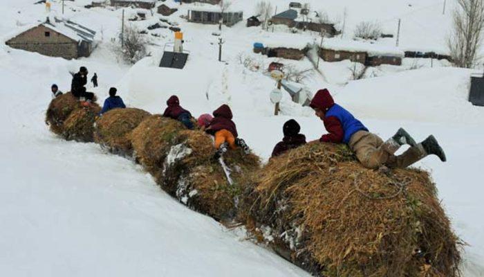Kar-kış demeden kızaklarla dağlardan indiriyorlar