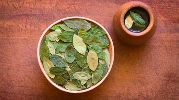 Mate Çayı Nasıl Demlenir? Mate Yaprağı Çayı Nasıl Yapılır, Nasıl Tüketilir?