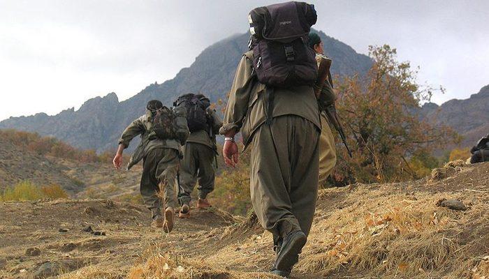 PKK'dan kaçan teröristler teslim oldu