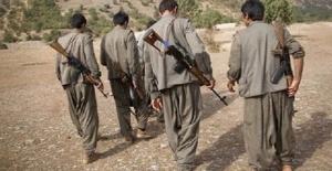 PKK'ya ağır darbe: 20 terörist öldürüldü