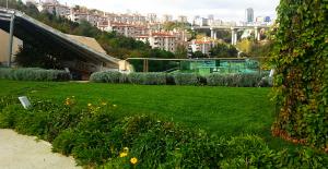 Yeşil Çatı Uygulamaları