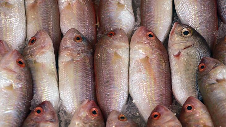 Balıkta büyük hile! Karbonat ve tuzun içinde bekletiyorlar...