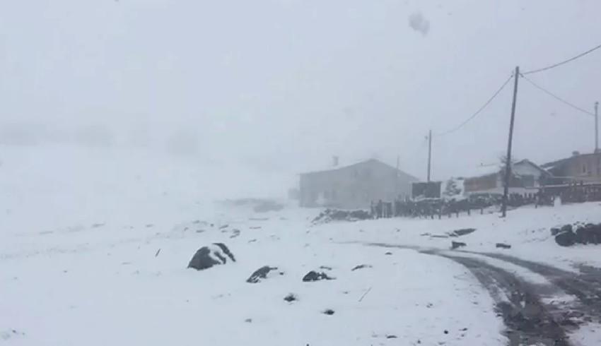 Mayıs ayında Rize'de kar yağdı: Donuyoruz
