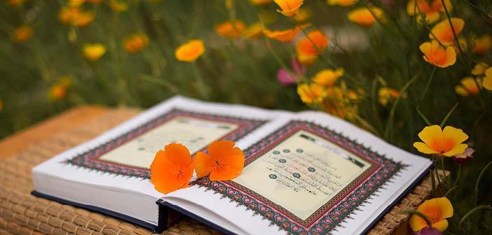 Meâric Suresi 19. Ayet Meali, Arapça Yazılışı, Anlamı ve Tefsiri