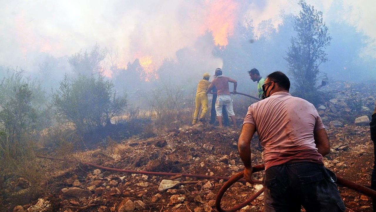 Milas'taki yangın Bodrum'a sıçradı!