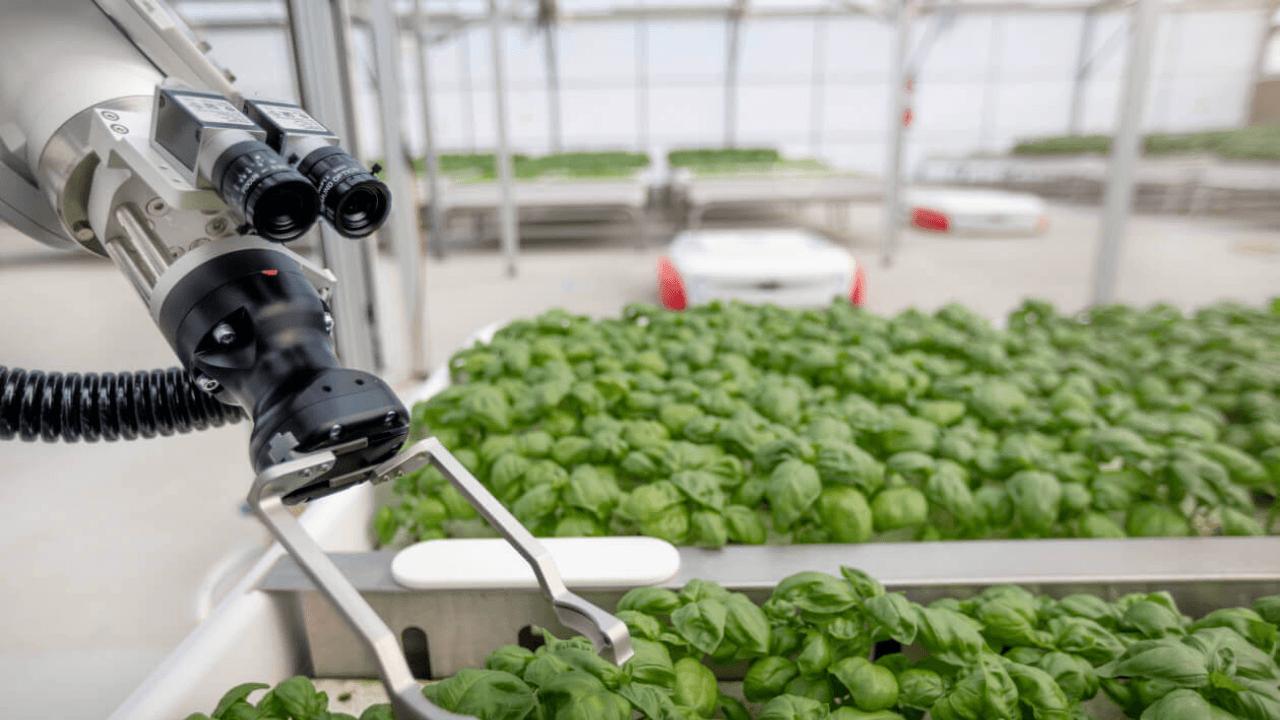 Tarım teknolojilerine odaklanan Iron Ox, 53 milyon dolar yatırım aldı