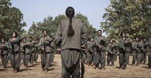 274 PKK'lı Nusaybin'de Etkisiz Hale Getirildi