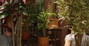 Çıplak Ayaklar Kumpanyası'ndan 'YOK OLMADAN' Sergisi