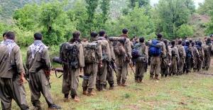 Darbe yiyen PKK ses getirecek yeni eylem peşinde