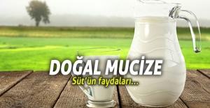 """Doğal Mucize """"Süt"""""""