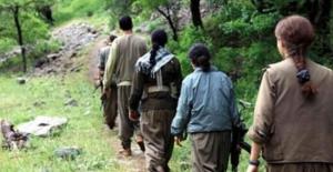 """Teslim olan PKK'lı kadın, """"PKK'ya inanmayın, tacizde bulunuyorlar"""""""