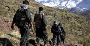 12 asker ve 4 polisi şehit eden teröristler için karar!