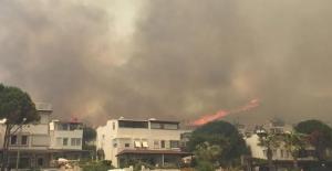 Bodrum'da yangın paniği!