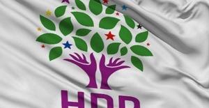 HDP'li vekiller Ahmet Yıldırım ve Burcu Özkan ifadeye çağrıldı!