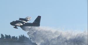 İzmir'de koruluk alanda yangın çıktı