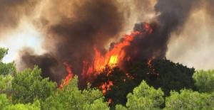 Manavgat'ın 3 farklı noktası alev alev yanıyor!