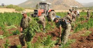 PKK'dan 'uyuşturucuları yakın' talimatı