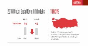 Türkiye, 113 ülke arasında 45. sırada yer aldı