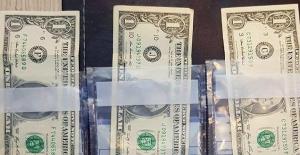 FETÖ'nün 1 dolar şifresi! Ne ifade ediyor?