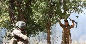 Lice'de 5 PKK'lı öldürüldü! Bir terörist böyle teslim oldu