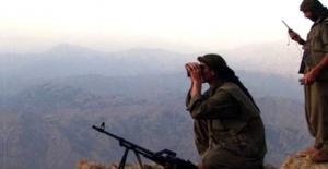 PKK'da şoka girdi: Salak mı bunlar keklik gibi avlandılar?