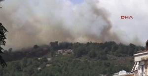 İstanbul'da orman yangını!