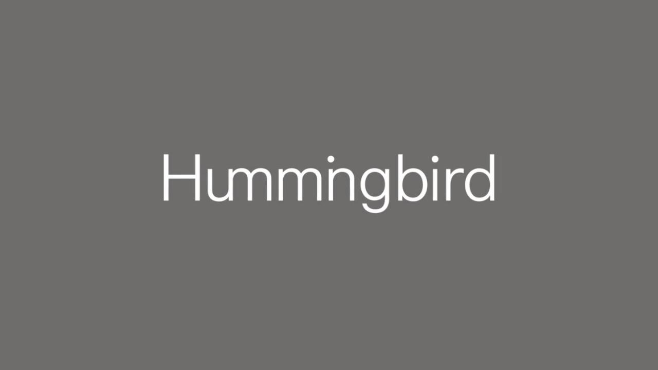 Hummingbird Ventures, 200 milyon dolar büyüklüğünde iki yeni fonunu duyurdu